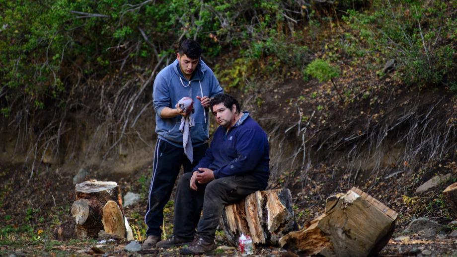 Comunero mapuche herido con arma blanca en su cuello
